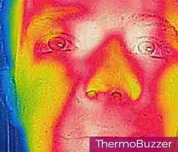 LPHC-Directory-Image-350-350-sandro-thermobuzze